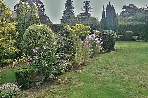anglické záhrady